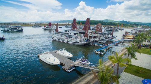 tăng giá vé qua cảng tuần châu