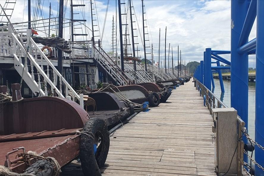 Vịnh Hạ Long mỗi ngày chỉ đón hơn 100 khách